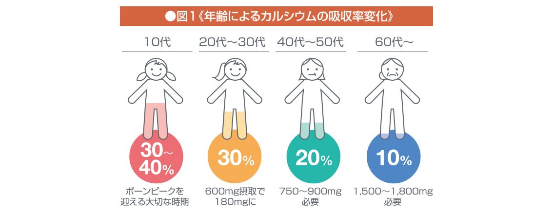 年齢によるカルシウムの吸収率変化