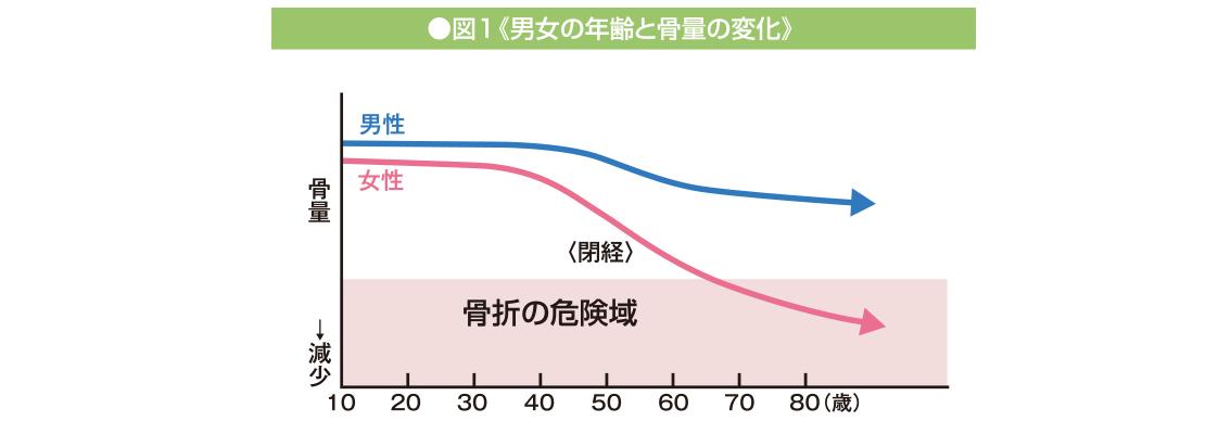 男女の年齢と骨量の変化