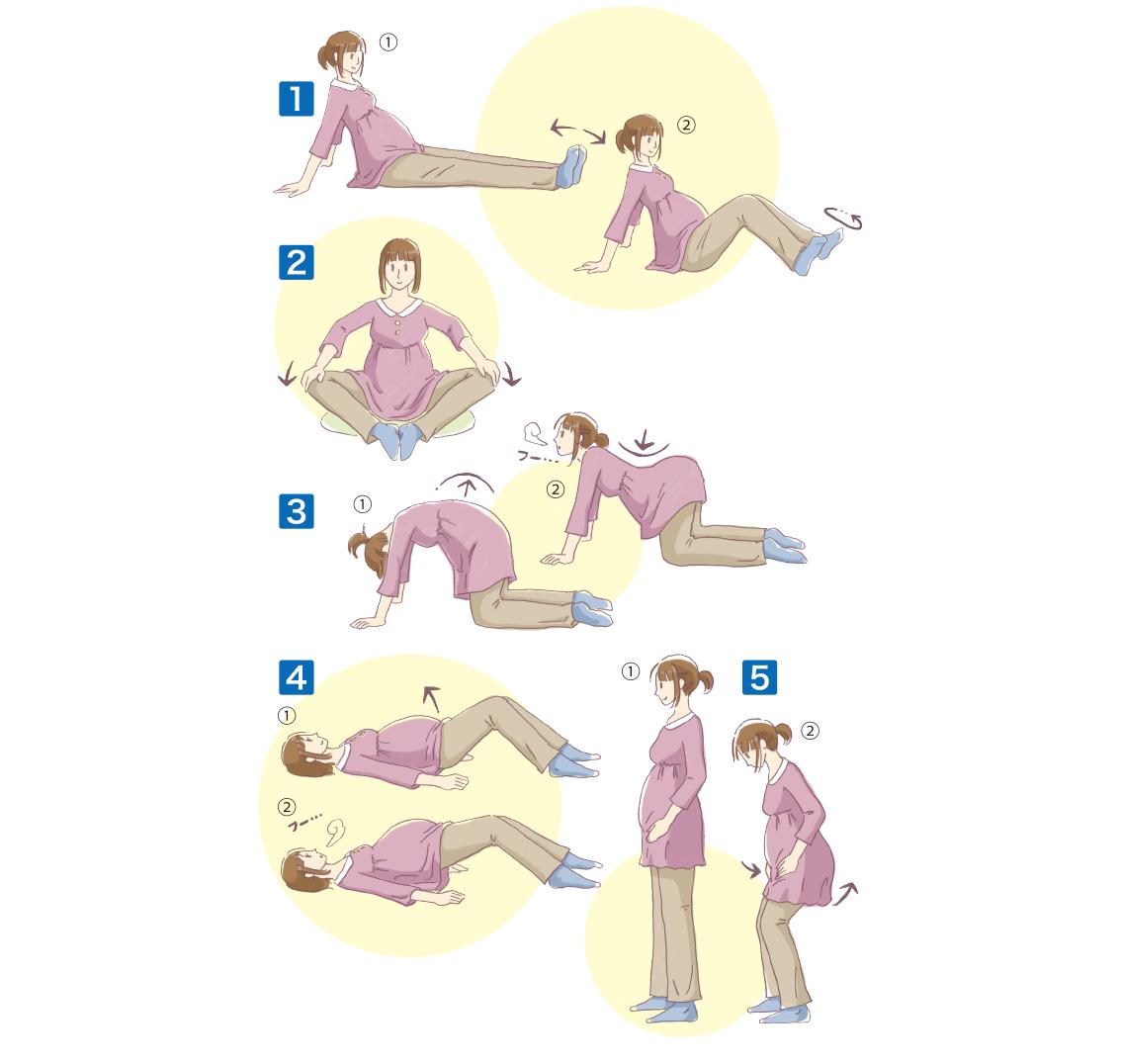 妊娠期と出産後の体操